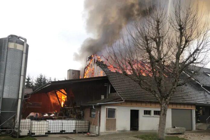 Mauensee LU – Brand einer Scheune mit angebautem Wohnhaus